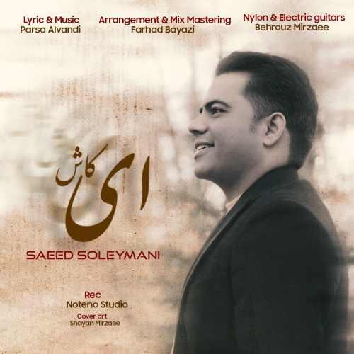 دانلود آهنگ جدید سعید سلیمانی ای کاش